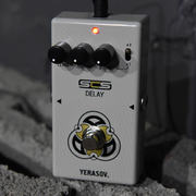 Yerasov DM-60 Delay